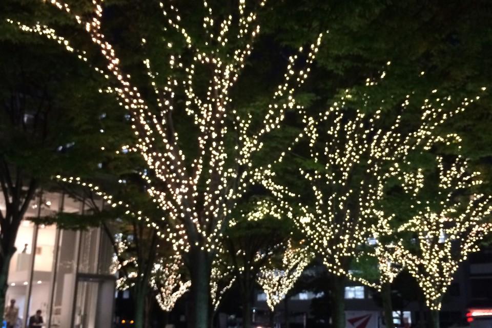 12/4(日)音と映像のクリスマスナイト 「デジクリ」 開催!! イメージ